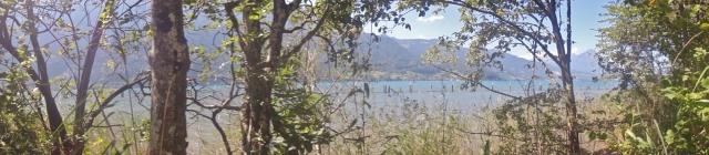 Lake Thun