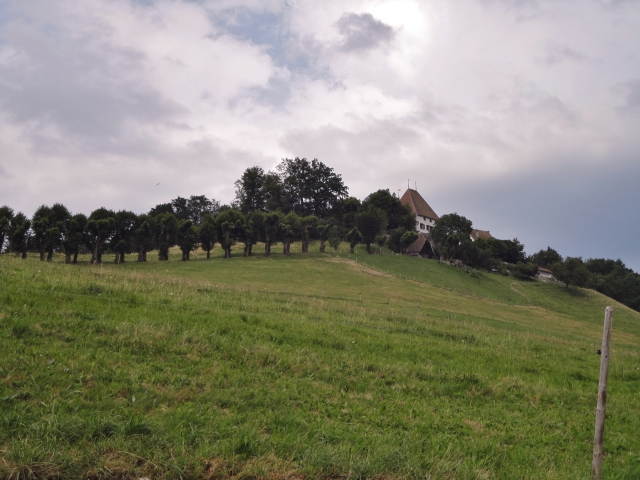 Castle close to Burgistein