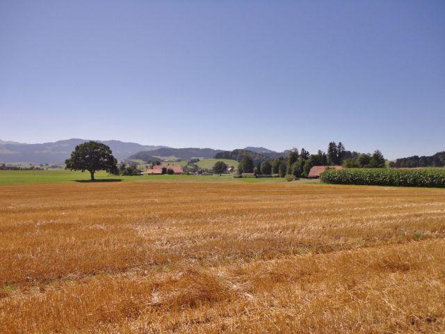 Scenery before Schwarzenburg